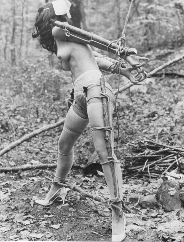 this entry was posted in uncategorized and tagged bdsm vintage